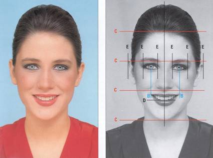 Facial proportions and relationships